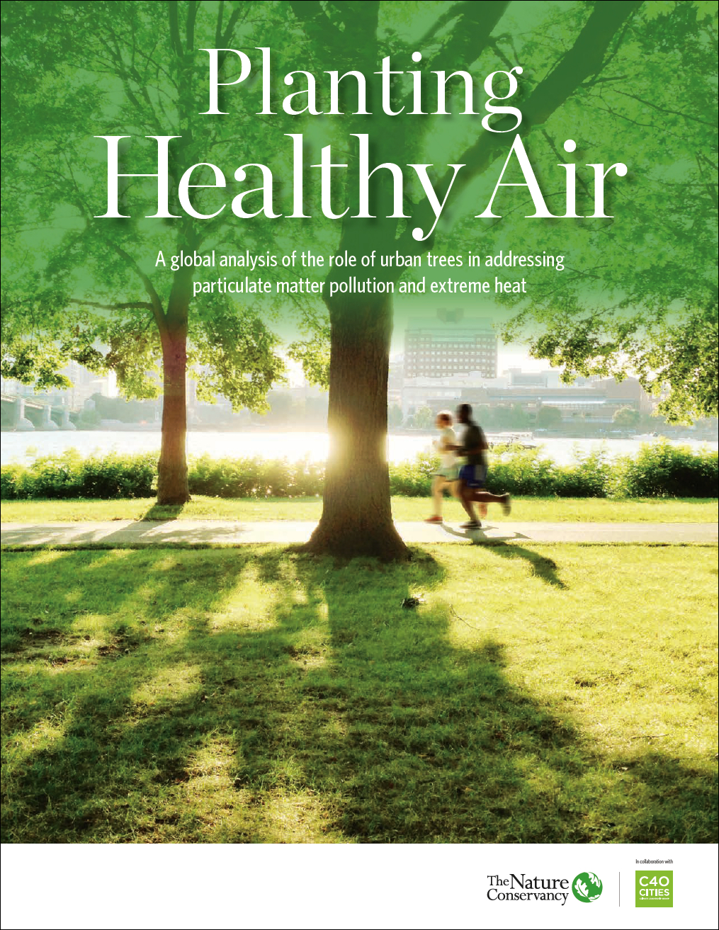 Planting Healthy Air Report - A global analysis of the role of urban trees in addressing particulate matter pollution and extreme heat.